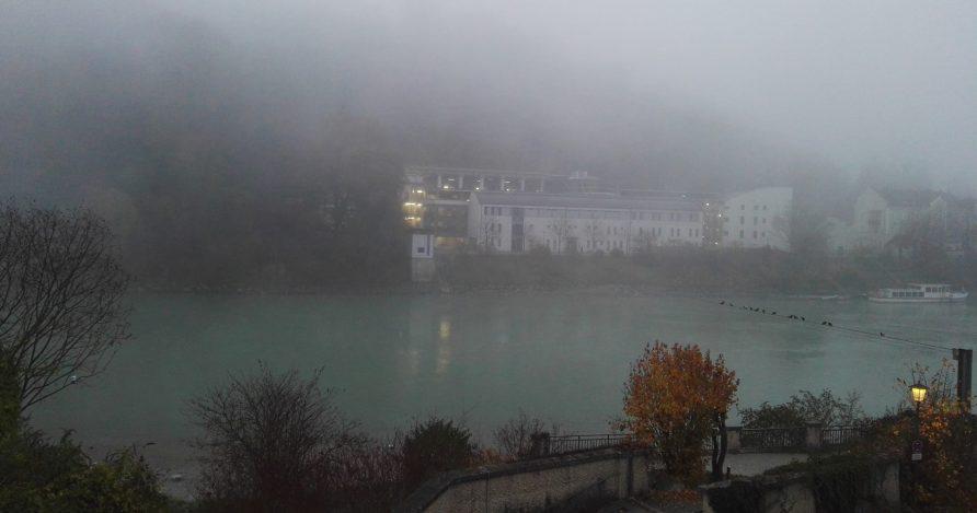 live from the Nebelschwaden